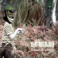 Big Merino - Suburban Wildlife