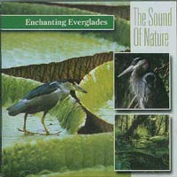 Sound Of Nature - Enchanting everglades