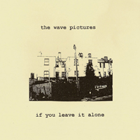 Wave Pictures - If You Leave It Alone