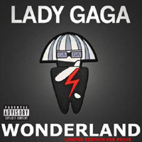 Lady GaGa - Wonderland (Limited Edition - USB Drive Version)