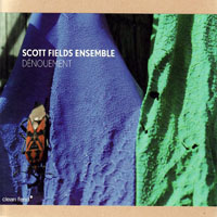 Fields, Scott - Scott Fields Ensemble - Denouement