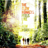 Blow Monkeys - Feels Like A New Morning