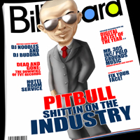 Pitbull (USA) - Shittin On The Industry (Presented by DJ Noodles & DJ Buddha)