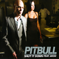 Pitbull (USA) - Shut It Down (Singe)