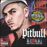 Pitbull (USA) - Money Is Still A Major Issue
