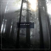 Winter Dust - Thresholds